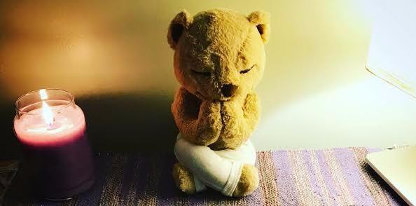 meddy teddy 2